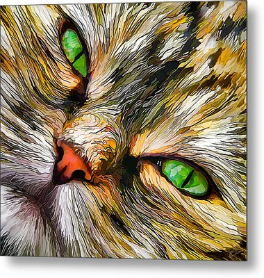 Green-eyed Tortie Metal Print