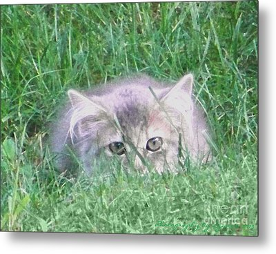 Metal Print featuring the photograph Green Eyes by Gena Weiser