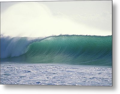 Green Feather Metal Print by Sean Davey