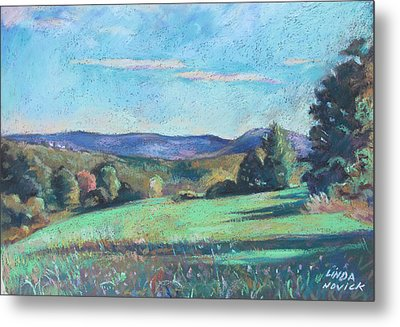 Green Field With Shadows Metal Print by Linda Novick