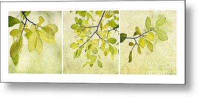 Green Foliage Triptychon Metal Print by Priska Wettstein