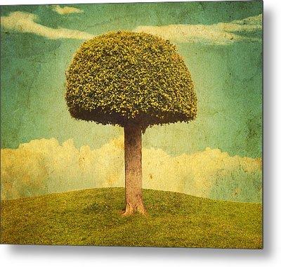 Green Growing Lullaby Metal Print by Brett Pfister