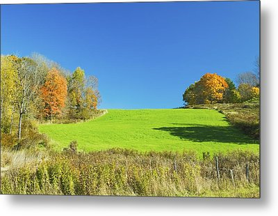 Green Hay Field And Autumn Trees In Maine Metal Print by Keith Webber Jr