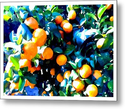 Green Leaves And Mature Oranges On The Tree Metal Print by Lanjee Chee