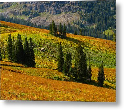 Green Mountain Trail Metal Print
