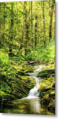 Green River No2 Metal Print by Weston Westmoreland