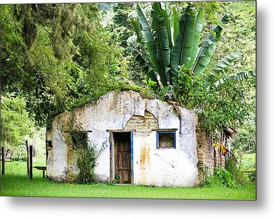 Green Roof Metal Print by Menachem Ganon