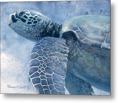 Green Sea Turtle Metal Print by Randall Scott