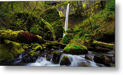 Green Seasons Metal Print by Chad Dutson