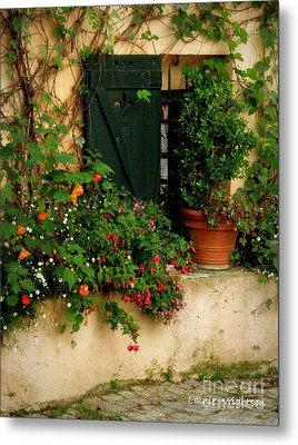 Green Shuttered Window Metal Print by Lainie Wrightson