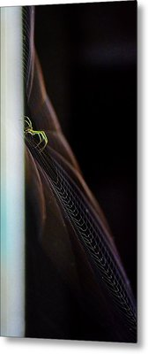 Green Spider Metal Print