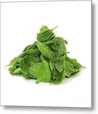 Green Spinach Metal Print