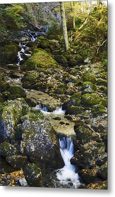 Green Stream  Metal Print by Julie Smith