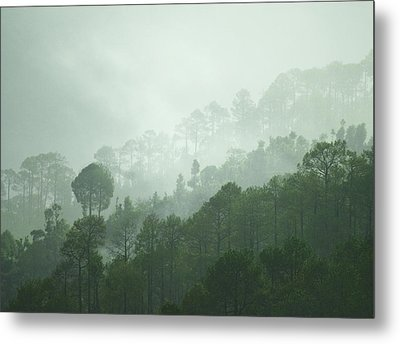 Green Trees Metal Print