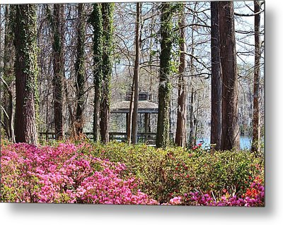 Greenfield Park And Lake Metal Print by Cynthia Guinn