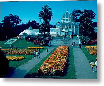 Greenhouse 1955 Metal Print by Cumberland Warden