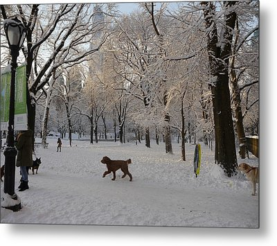 Greeting Friends In Central Park Metal Print