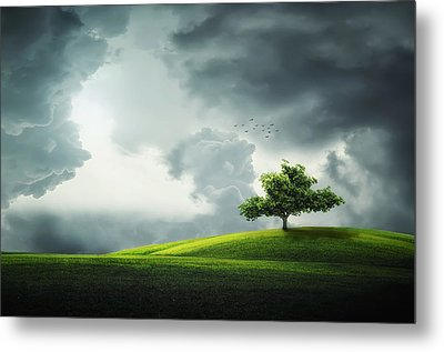 Grey Clouds Over Field With Tree Metal Print by Bess Hamiti