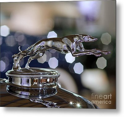 Grey Hound Hood Ornament Metal Print by JRP Photography