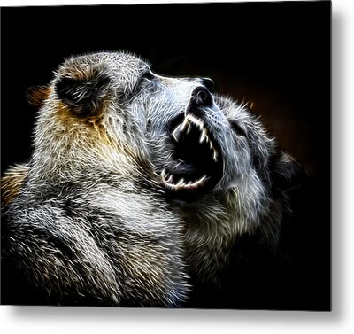 Grey Wolf Fight Metal Print