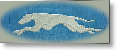 Greyhound II Metal Print