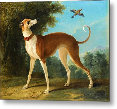 Greyhound In A Landscape Metal Print by Jean-Baptiste Oudry