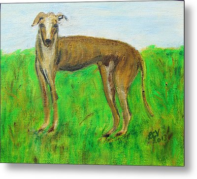 Greyhound Posing Metal Print by Lucille  Valentino