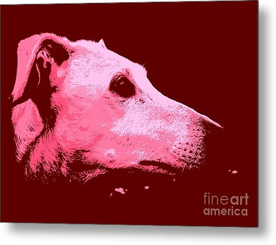 Metal Print featuring the photograph Greyhound Profile by Clare Bevan