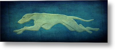 Greyhound Metal Print by Sandy Keeton