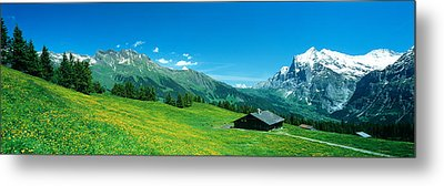 Grindelwald Switzerland Metal Print by Panoramic Images