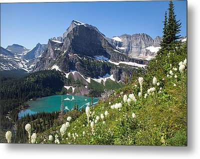 Grinnell Lake With Beargrass Metal Print