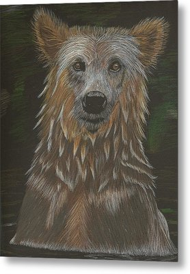 Grizzly Bath Metal Print by Sheila Byers