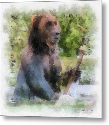 Grizzly Bear Photo Art 01 Metal Print by Thomas Woolworth