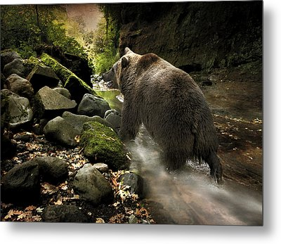 Metal Print featuring the photograph Grizzly Creek by Roy  McPeak
