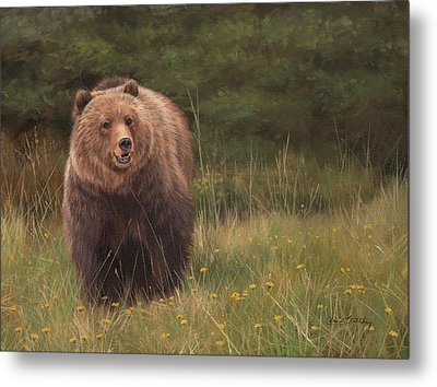 Grizzly Metal Print by David Stribbling