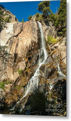 Grizzly Falls 1-7773 Metal Print