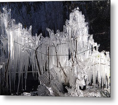 Growing Icicles In Florida Metal Print