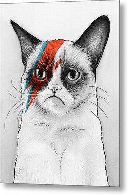 Grumpy Cat As David Bowie Metal Print by Olga Shvartsur