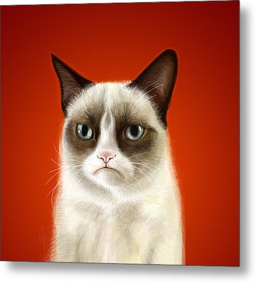 Grumpy Cat Metal Print by Olga Shvartsur