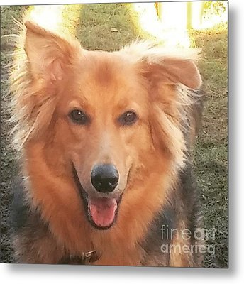 #gsd #germanshepherd #germanshepherddog Metal Print