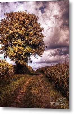 Guardian Of The Field Metal Print