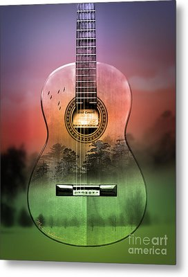 Guitar Nature  Metal Print