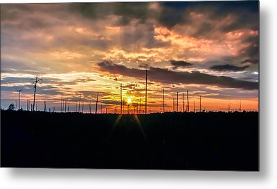 Gulf Shore Sunset Metal Print by Rob Sellers