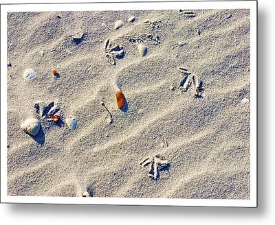Gull Tracks Metal Print