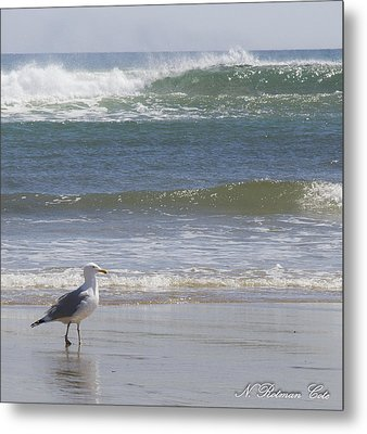 Gull With Parallel Waves Metal Print