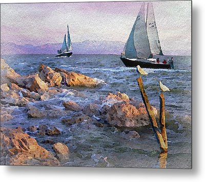 Gulls Watching The Ships Metal Print by Philip White