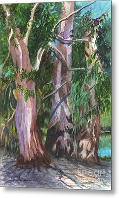 Gum Trees In Oz Metal Print by Carol Wisniewski