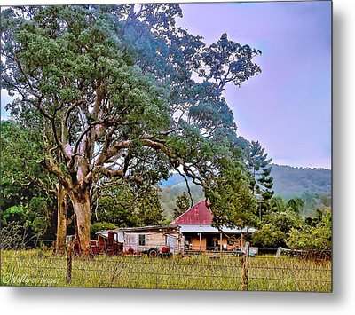 Metal Print featuring the photograph Gumtree Gully by Wallaroo Images