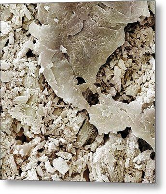 Gypsum Crystals Sem Metal Print