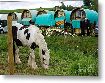 Gypsy Cob And Wagons Metal Print by Liz  Alderdice
